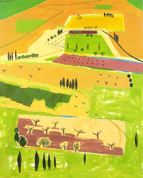 緑豊かな土地